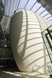 The Cocoon of the Darwin Centre