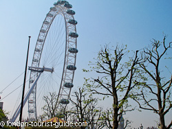 The London Eye from the Southbank